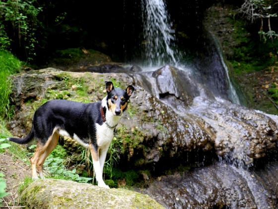 König des Wasserfalls ;)