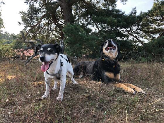 Lua und Peppi