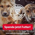 Spenden-Marathon_Spenden_2019_Hund_300x250.jpg